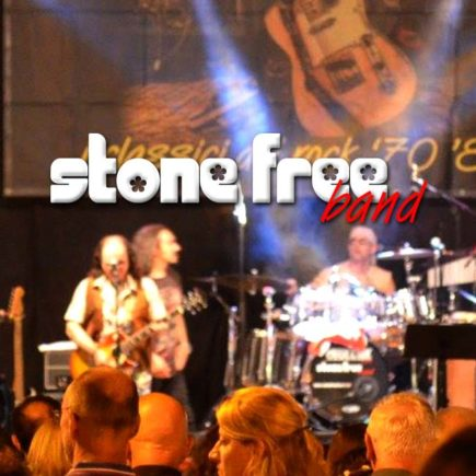 L'immagine ritrae il gruppo musicale Stone Free Band